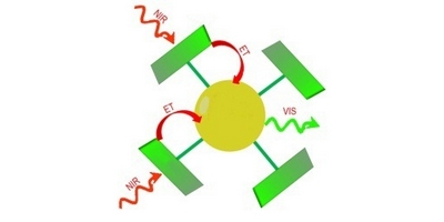 Antennenmoleküle verstärken IR-Licht