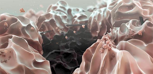 Mikroskopisches Falschfarbenbild: Die schwarze Graphenoxid-Elektrode umringt von Lithiumhydroxid-Partikeln (rosa). Bild: Liu et al., Science