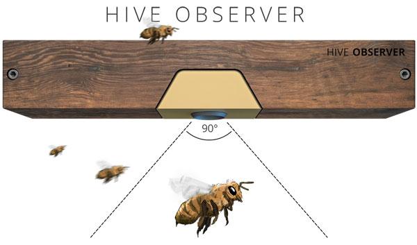 Beela Hive Observer
