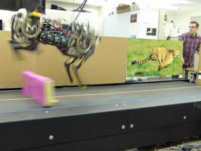 Geparden-Roboter können springen