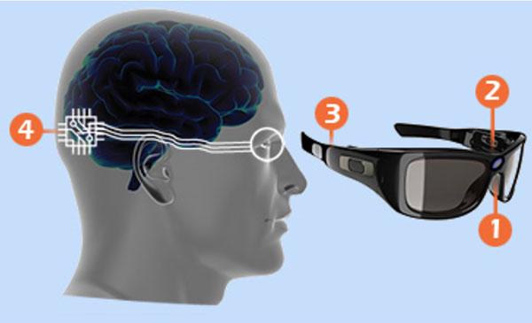 Die Kamera (1), von einem Augenbewegungsdetektor gesteuert (2), gibt ihre Signale an einen Mikroprozessor weiter (3), der sie an das kortikale Implantat sendet (4).